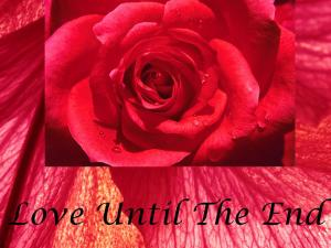 Love Until The End2